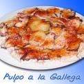 Plato-comida-andaluza-005