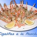 Plato-comida-andaluza-009