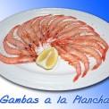 Plato-comida-andaluza-011
