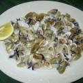 Plato-comida-andaluza-019